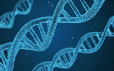 biotechnology-1