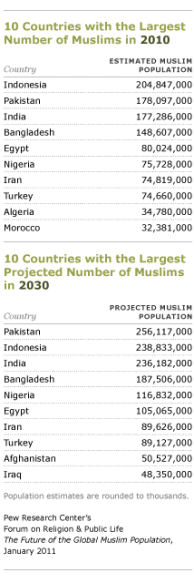 10 largest muslim countries